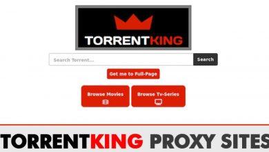 TorrentKing Proxy